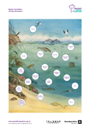 Marine Food Webs Activity Worksheet 1