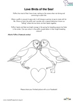 Love Birds - Colouring Sheet Thumbnail
