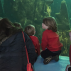 Kelp Exhibit Gets a Makeover!
