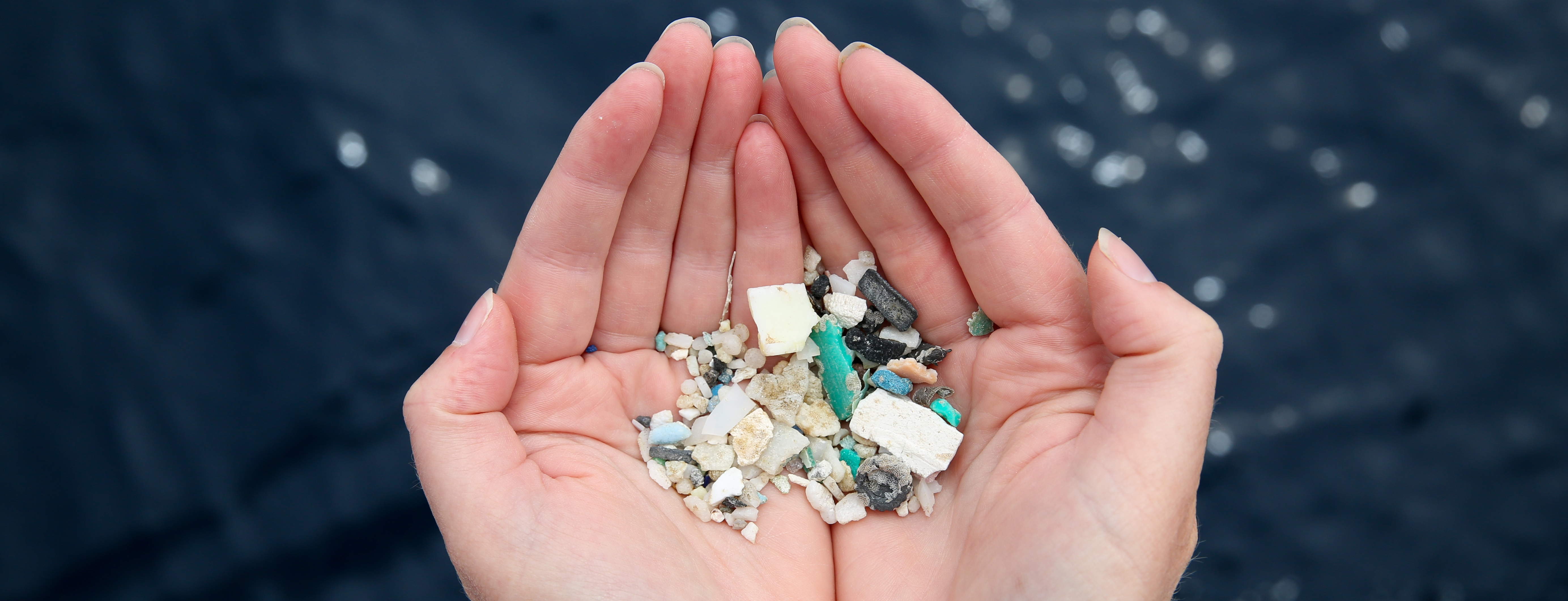 POSTPONED:  Navigating our Way towards a Plastic-Free Ocean with Emily Penn 10th May
